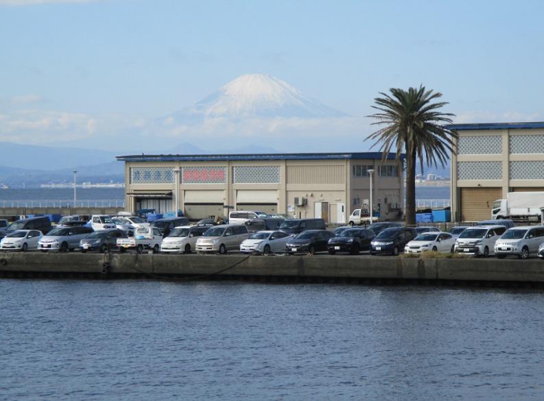 富士山と 片瀬漁港直売所