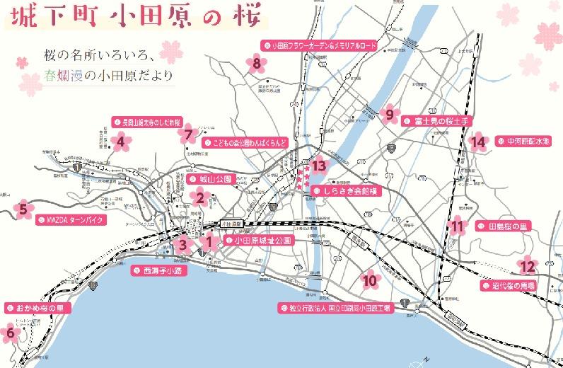 小田原の桜地図